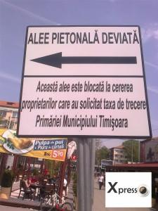 Cei din Timisoara inteleg mai bine