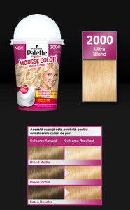 pallette mousse color