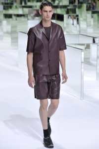 piele Dior Homme